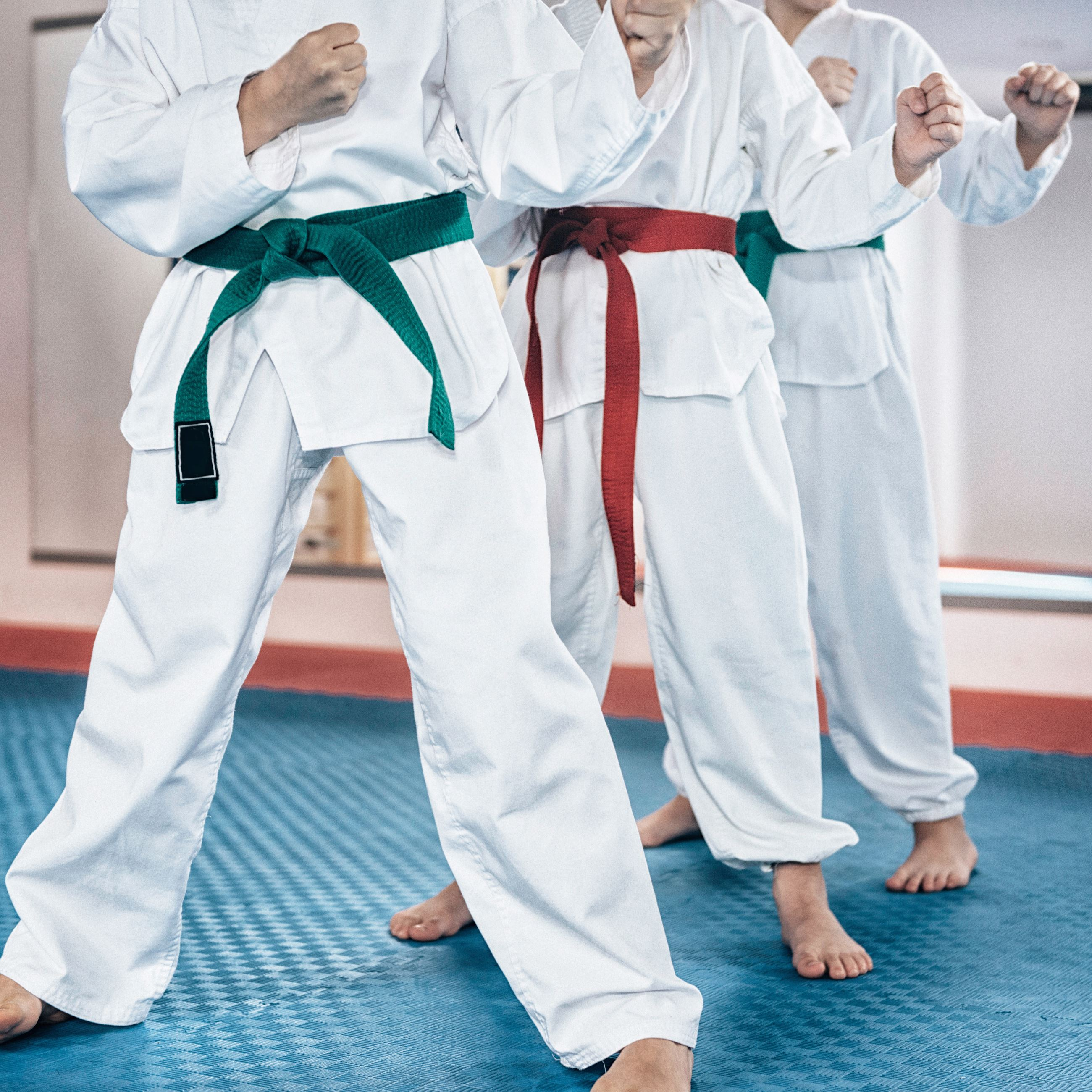 Tae Kwon Do Older Kids
